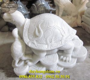 rùa đá 4